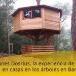 Cabanes Dosrius, la experiencia de dormir en casas en los árboles en Barcelona